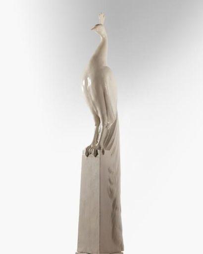 Alphonse Darville (1910-1990). Paon, plâtre...