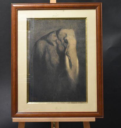 Paul JOUVE (1878-1973)  Eléphant dans la...
