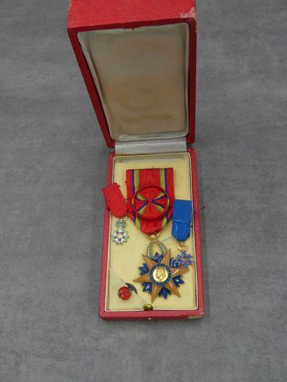 France Lot de 2 miniatures, Légion d'honneur...