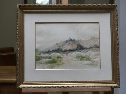 Paul MARTIN, Promenade en montagne