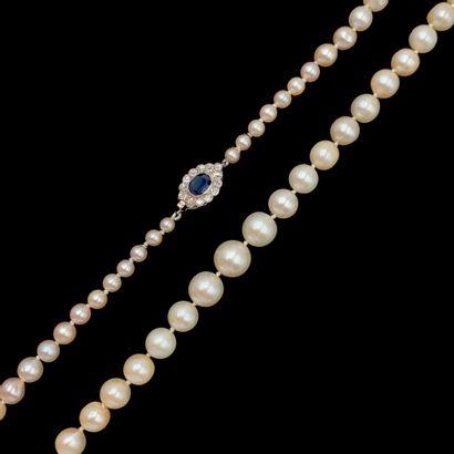 COLLIER composé d'un rang de 63 perles de...