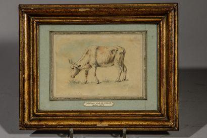 . École hollandaise du XIXe siècle  Vache...