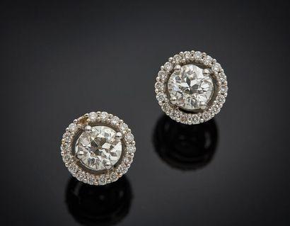 Paire de CLOUS d'OREILLES circulaires en or gris (750) serti d'un diamant taille...