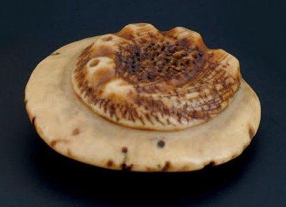 NETSUKE en forme de champignon arboricole. Corne de cervidé. Japon début XXème siècle...
