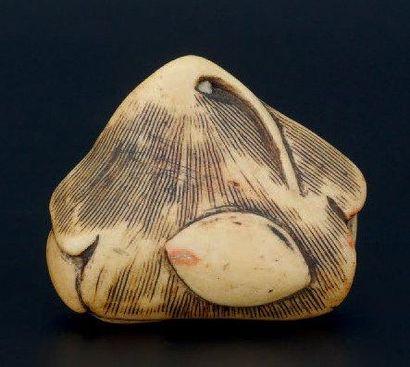 NETSUKE en ivoire représentant un fruit. Japon XIXème siècle 5 x 4 cm