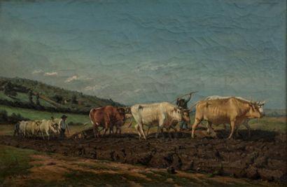 Rosa BONHEUR (1822-1889)  LE labours  huile...