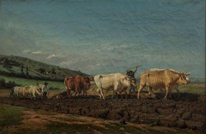 Attribué à Rosa BONHEUR (1822-1889)