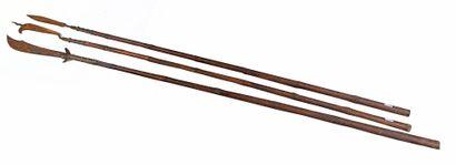 Ensemble de trois lances de cérémonie à hampes...