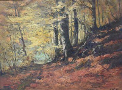 """Joseph François (1851-1940). Oil on canvas, """"le sous bois"""", signed lower right...."""