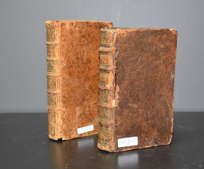 Set of two antique leather-bound dummy books with secrets.
