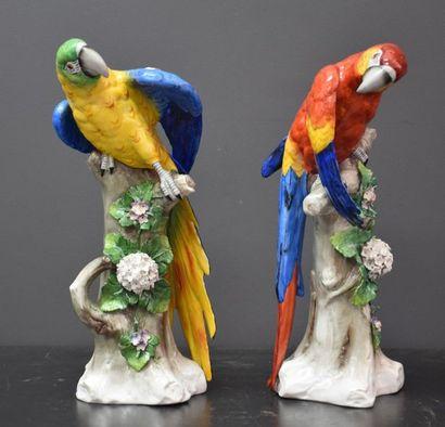 Paire de perroquets en porcelaine allemande...