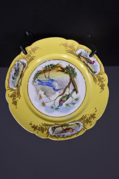Sèvres porcelain: set of 4 plates and two ramekins on a yellow background decorated...