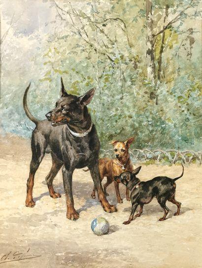 Charles Olivier de PENNE (1831-1897)  Chiens...