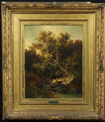 Carl HASCH (1834-1897). Paysage forestier...