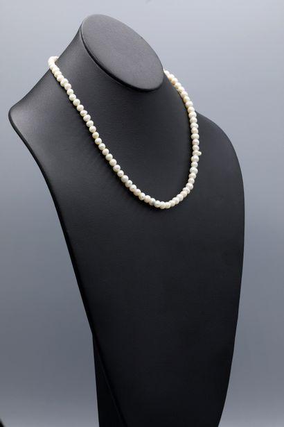 Collier de 82 perles d'eau douce en choquer,...