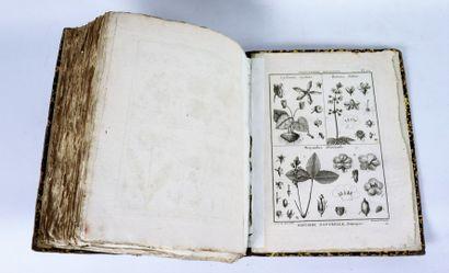LAMARCK (Chevalier). Tableau encyclopédique...