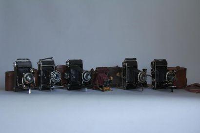 Lot de 6 appareils photos à soufflet : PHOTO...