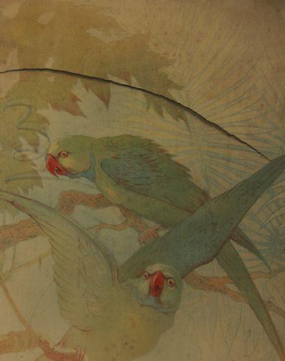 Gaston NOURY (1865-1936)  Oiseaux parmi des branches  Paire de lithographies  121,5...