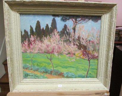 Péchers en fleurs Huile sur toile marouflée sur panneau Signée en bas à gauche 38.5...