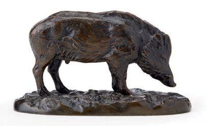 D'après Alfred BARYE (1839-1882) Sanglier debout Epreuve en bronze à patine foncée...