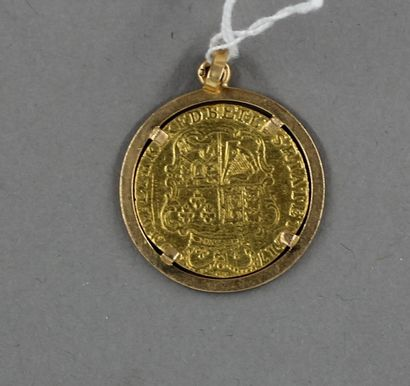 Louis d'or (montée)  poids : 5,8 gr
