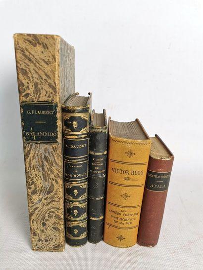 Lot de romans de la littérature classique...