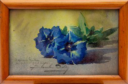 Blanche ODIN (1865-1957).  Gentianes.  Aquarelle...