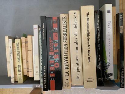 * Lot de livres Beaux Arts et surréalisme...