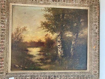 E. RICARD. Sous bois. Huile sur toile, signée....
