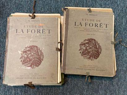 MÉHEUT (Mathurin). Étude de la forêt. Paris, Lévy, 1927.