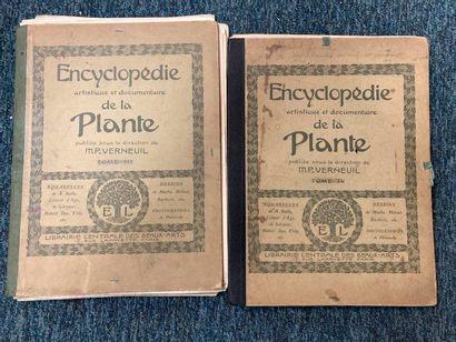 VERNEUIL. Encyclopédie artistique et documentaire de la plante.