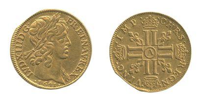 *Double Louis. Paris. 1641. (Dy. 1297, Dr....