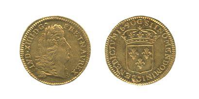 *Louis d'or à l'écu. Poitiers.1690. Rf. (Dr....