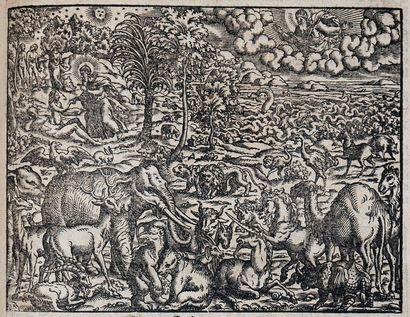 [Bible illustrée. Allemand. 1578]. Sum[m]aria...