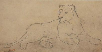 Antoine Louis BARYE (1795-1875). Lionne couchée....
