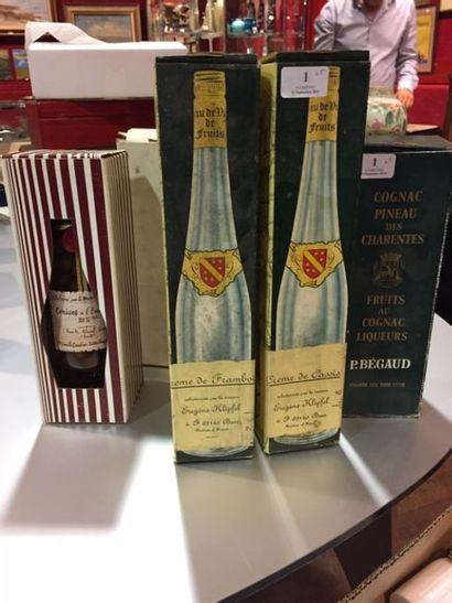 LOT de 5 bouteilles comprenant : -1 Fruit au Cognac Bégaud -1 Cerise l eau de vie...