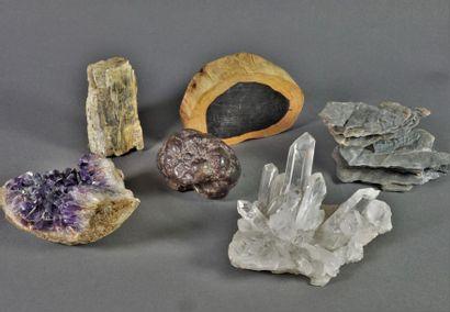 Ensemble de pierres, cristaux, bois pétrifiés...