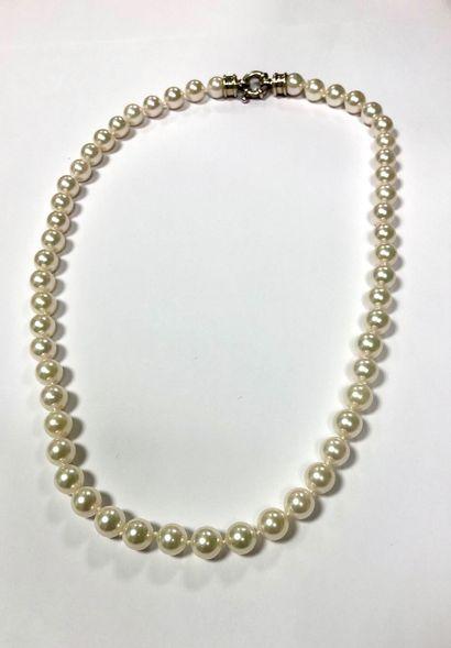 Collier de perles naturelles Akoya Japon...