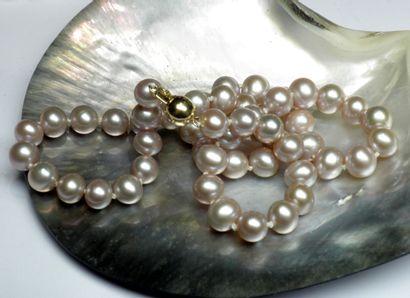 Important collier en perles de culture diamètre...