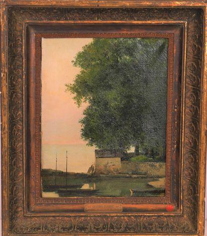 Cherubino PATA  & Gustave COURBET