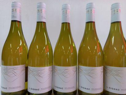 12 Btls Bourgogne Blanc Chardonnay. 2017....