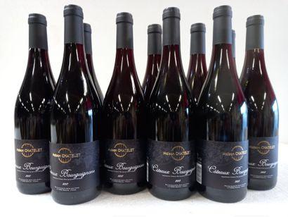 12 Btls Bourgogne Côteaux Bourguignons Rouge...
