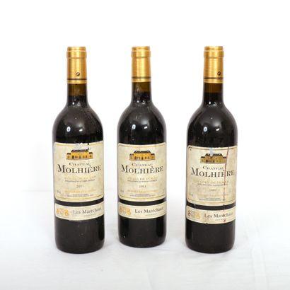 3 Btls Côtes de Duras rouge, Château Molhière...