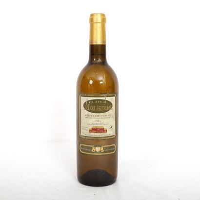 1 Btl Côtes de Duras blanc, Château Molhière...