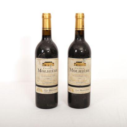 2 Btls Côtes de Duras rouge, Château Molhière...