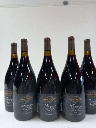 5 Magnums (150cl) Bourgogne pinot noir 2018....