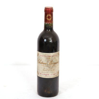 1 Btl Saint Julien, Château Branaire, 1996...