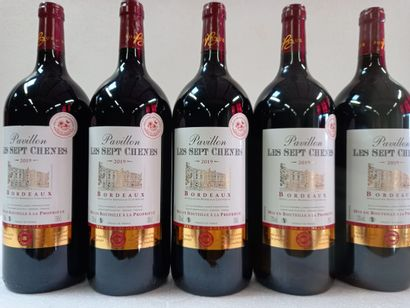 5 Magnums Bordeaux Le Pavillon des sept chênes...