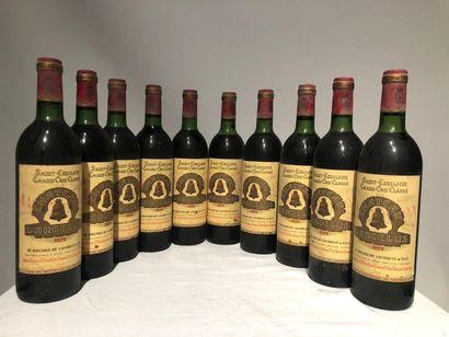 Lot de 10 bouteilles de