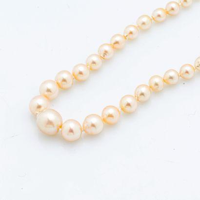 Collier composé d'un rang de perles de culture en chute, certaines baroques, le...